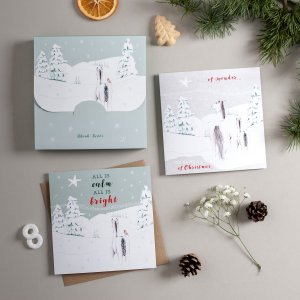 Festive Frolics boxed set